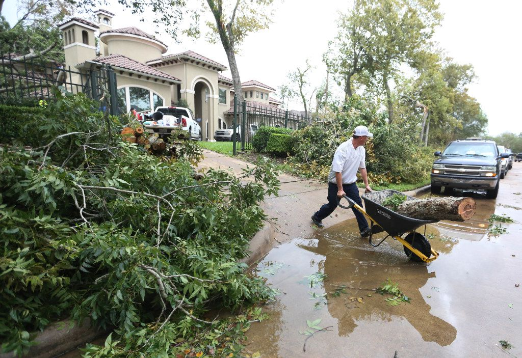 Spencer McIntyre wheels a piece of tree trunk k to the curb after a tornado spawned by Hurricane Harvey hit the Sienna Plantation subdivision southeast of Houston on Saturday, August 26, 2017. (Louis DeLuca/The Dallas Morning News)