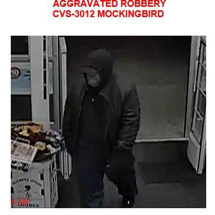 Surveillance photo of robbery suspect
