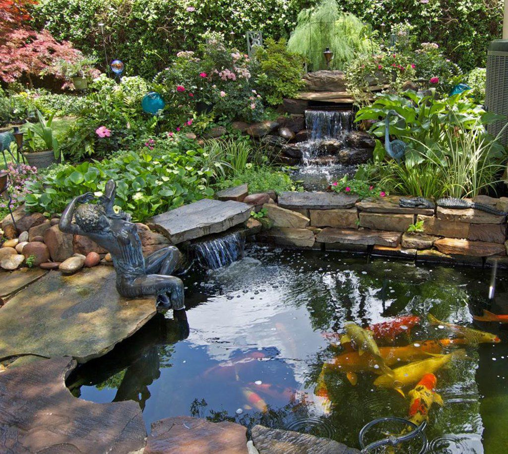 The North Texas Water Garden Society Pond Tour offers day and evening excursions to ponds filled with koi, goldfish and aquatic plants.