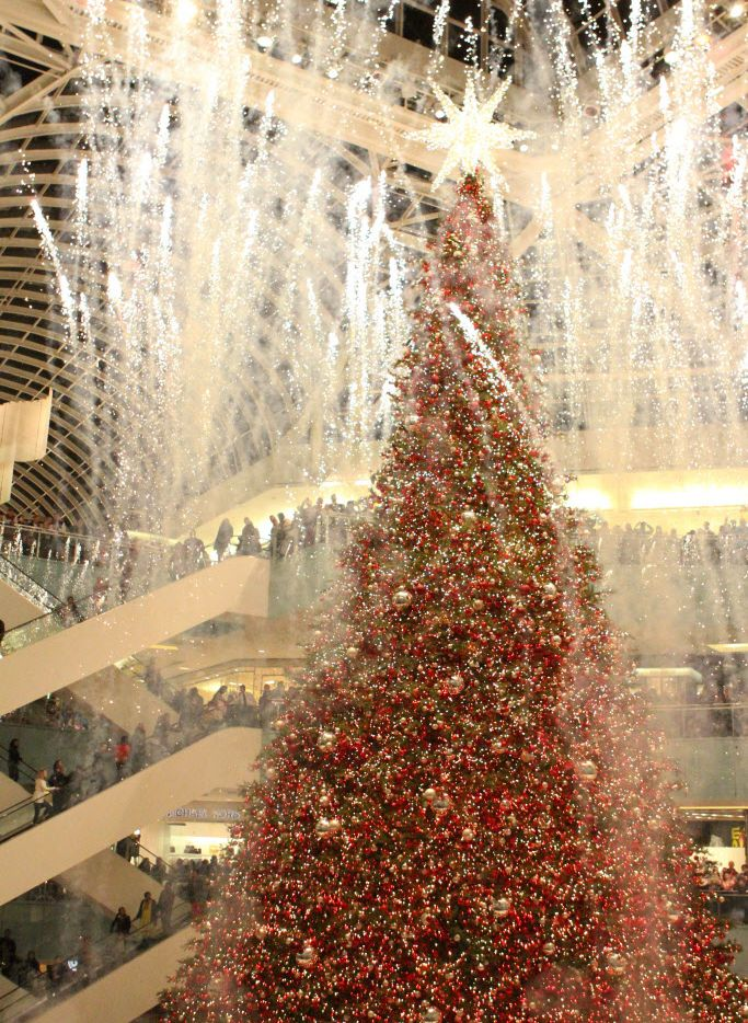 The largest Christmas tree in the country is lit at the Macy's Grand Tree Lighting Celebration at Galleria Dallas in Dallas, Texas, Saturday, December 21, 2013.
