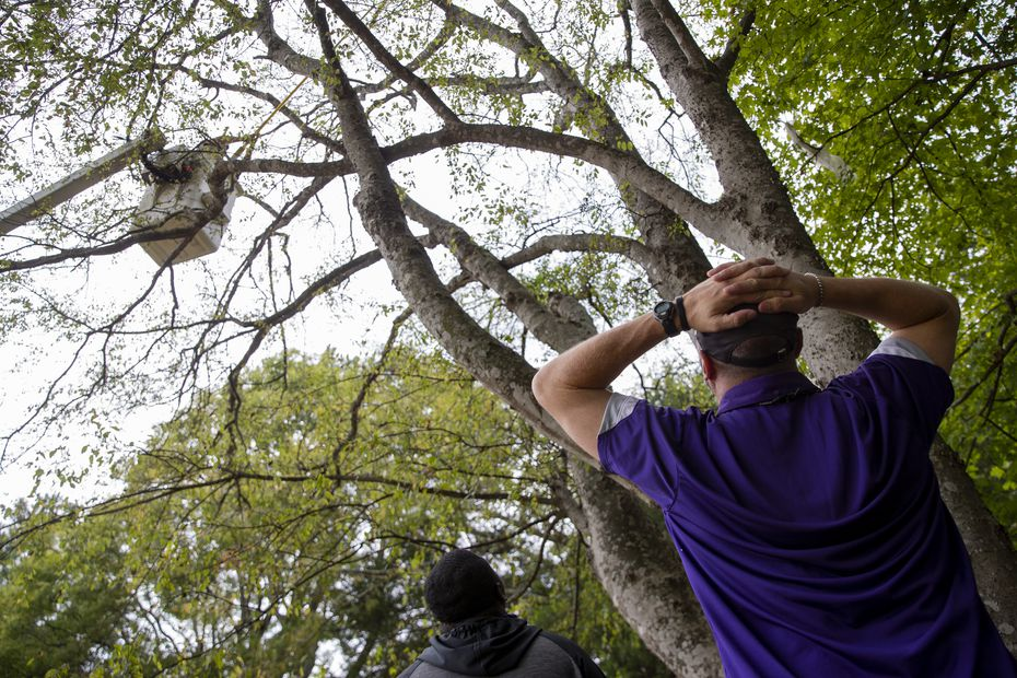 Stephen F. Austin Lumberjacks video coordinator Martin Oteng (left) and coach Colby Carthel watch as a crew works to get a drone down after it fell in the trees lining the practice field in Nacogdoches on Thursday, Oct. 8, 2020. (Juan Figueroa/ The Dallas Morning News)