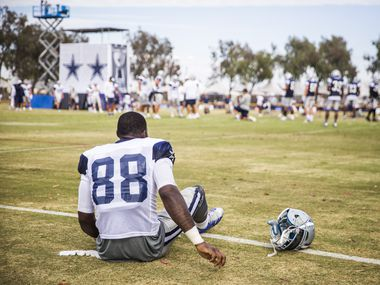 "Dallas Cowboys wide receiver Dez Bryant sits on the field after feeling a strain in his left hamstring during afternoon practice at training camp on Thursday, Aug. 6, 2015, in Oxnard, Calif. ""I just felt a little bit of strain, that's all, nothing major,"" he said after the practice."