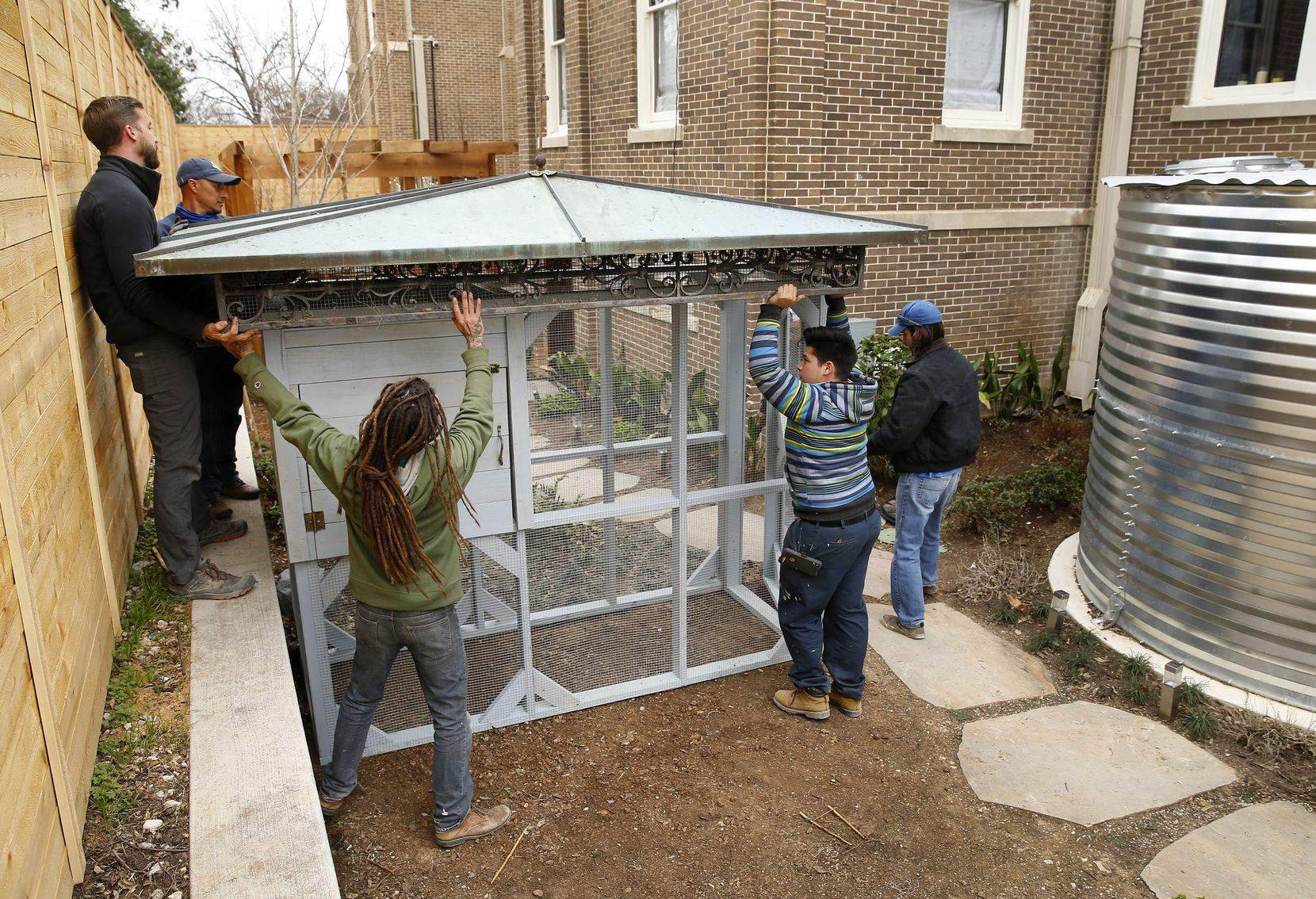 John Ramos (right) and his crew install a palatial, pre-built chicken coop in the backyard of Suzy Batiz's Old East Dallas home.