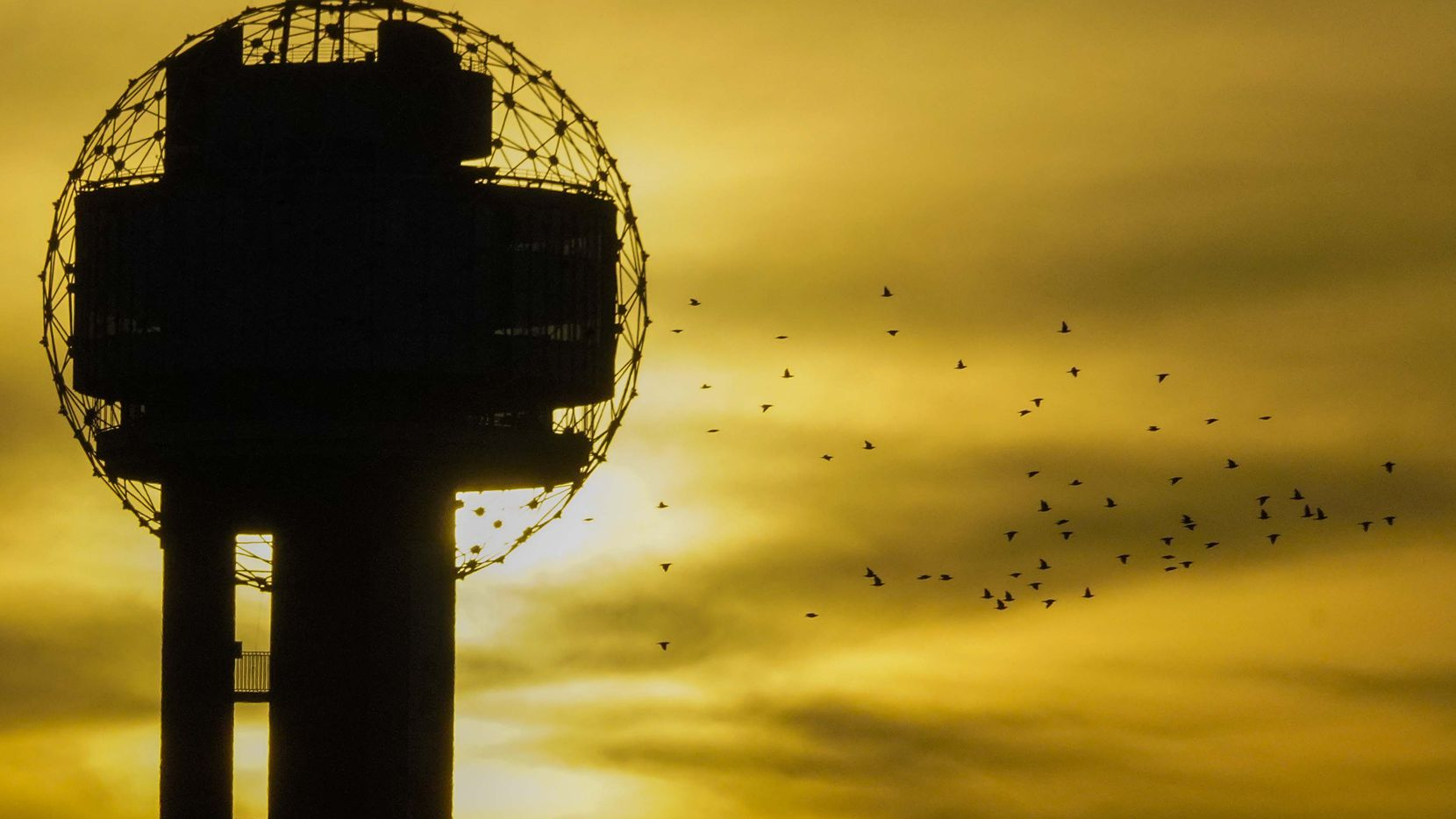 The sun sets as a flock of birds flies past Reunion Tower on June 30, 2020, in Dallas.