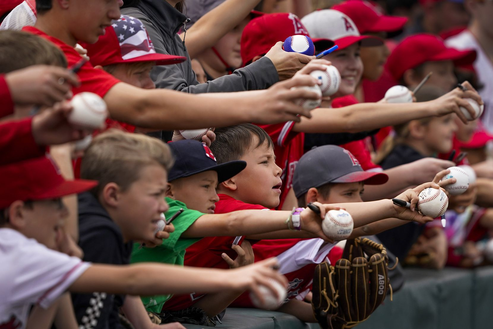 Young fans plead for players to sign their baseballs before a spring training game between the Rangers and the Los Angeles Angels at Tempe Diablo Stadium in Tempe, Ariz.