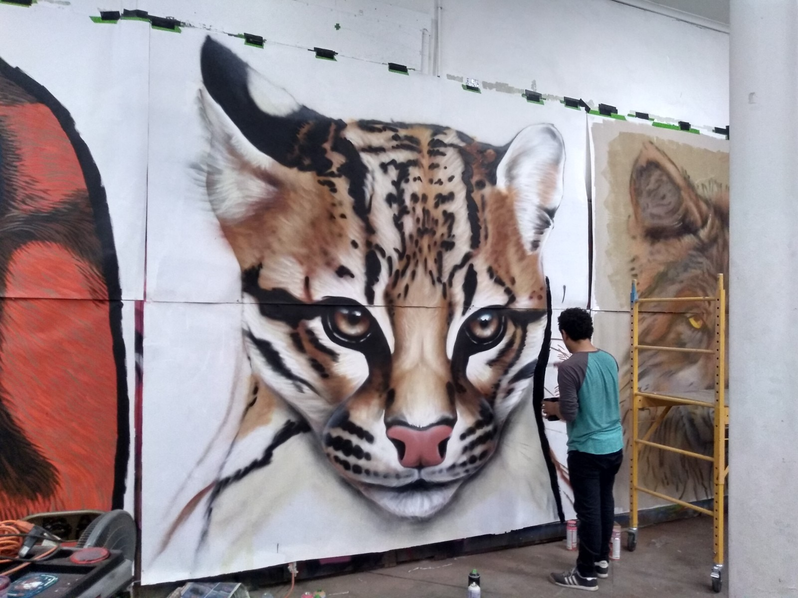 An ocelot is featured on a new mural in El Paso depicting endangered borderland wildlife. Ivan Melendez of Ciudad Juárez was one of four artists who worked on the piece, which is part of a national mural project. (Courtesy of Roger Peet)