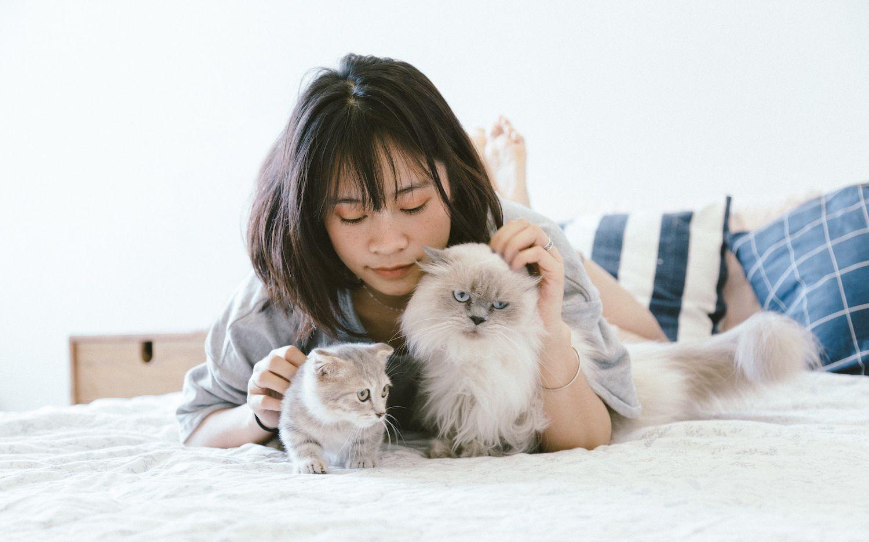 Hay que evitar que las mascotas se acerquen a otras personas, porque en su piel el virus puede sobrevivir mucho tiempo.