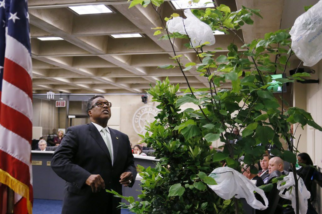 Caraway brought fake plastic trees and plastic bags to Dallas City Hall in June 2015 in an attempt to persuade his colleagues to turn his bag fee into an outright ban. It didn't work. (File Photo/Staff)