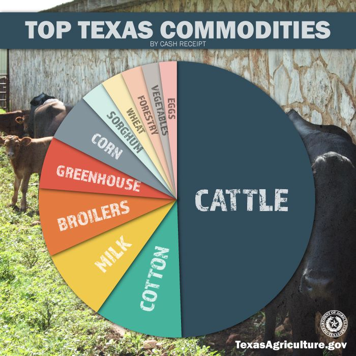 Agricultural sales in Texas average about $20 billion annually, with cattle making up $10.5 billion of that.