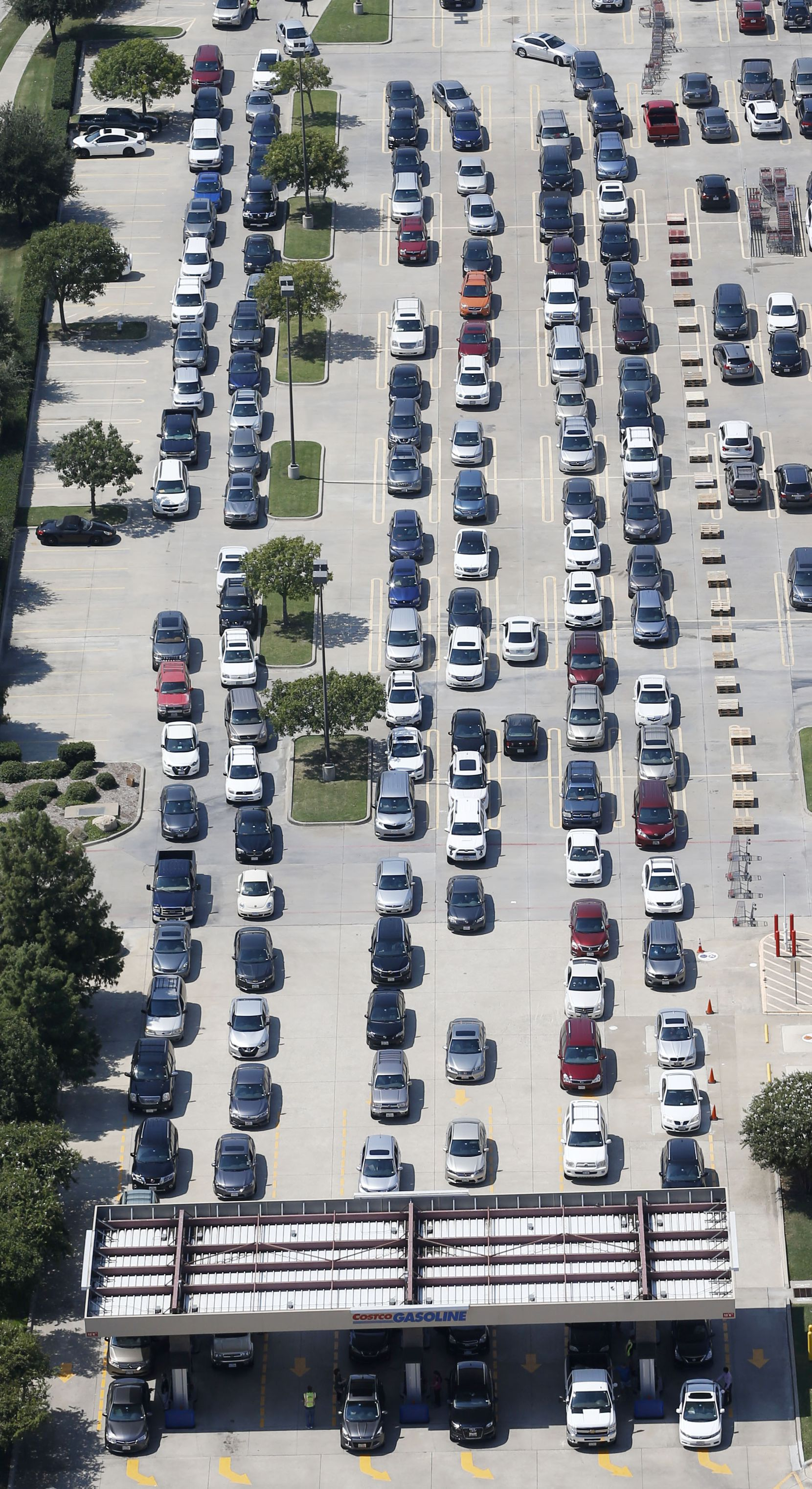 People wait in line to get gas at the Costco at Sam Rayburn Tollway and I-35 in Lewisville, TX on Thursday, August 31, 2017.