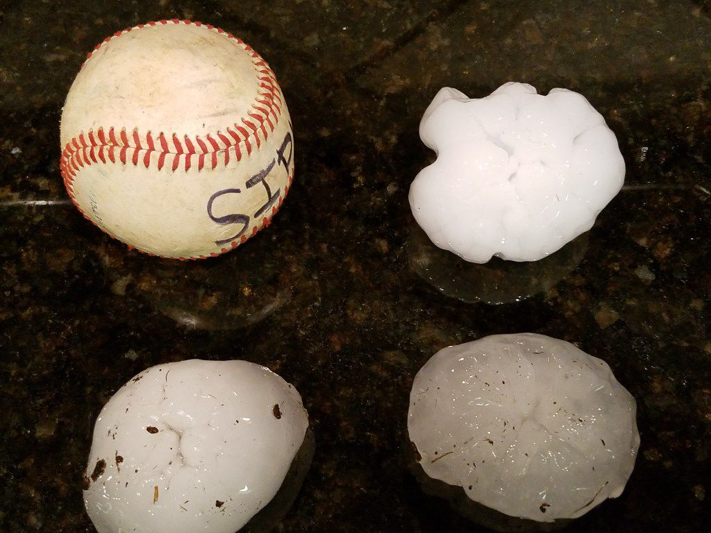 Numerous large size balls of nearly-baseball-sized hail were collected by a Prosper, Texas, homeowner whose house was damgaed by the hail after severe storms raked the area Friday night, April 21, 2017. (Photo by Rob Sipll)