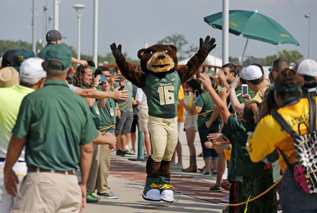 """The Baylor mascot """"Bruiser"""" makes his way along the sidewalk during the """"March of the Bears"""" before the Northwestern State University Demons vs. the Baylor University Bears NCAA football game at McLane Stadium in Waco, Texas on Friday, September 2, 2016. (Louis DeLuca/The Dallas Morning News)"""