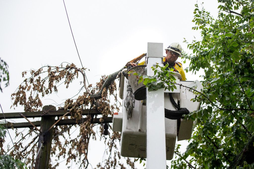 Freddy Diaz, a troubleshooter with Oncor Electric Delivery, works to remove a fallen tree branch that caused a blown fuse in the Junius Heights neighborhood in Dallas after a severe thunderstorm caused power outages throughout the city on Sunday, June 16, 2016.