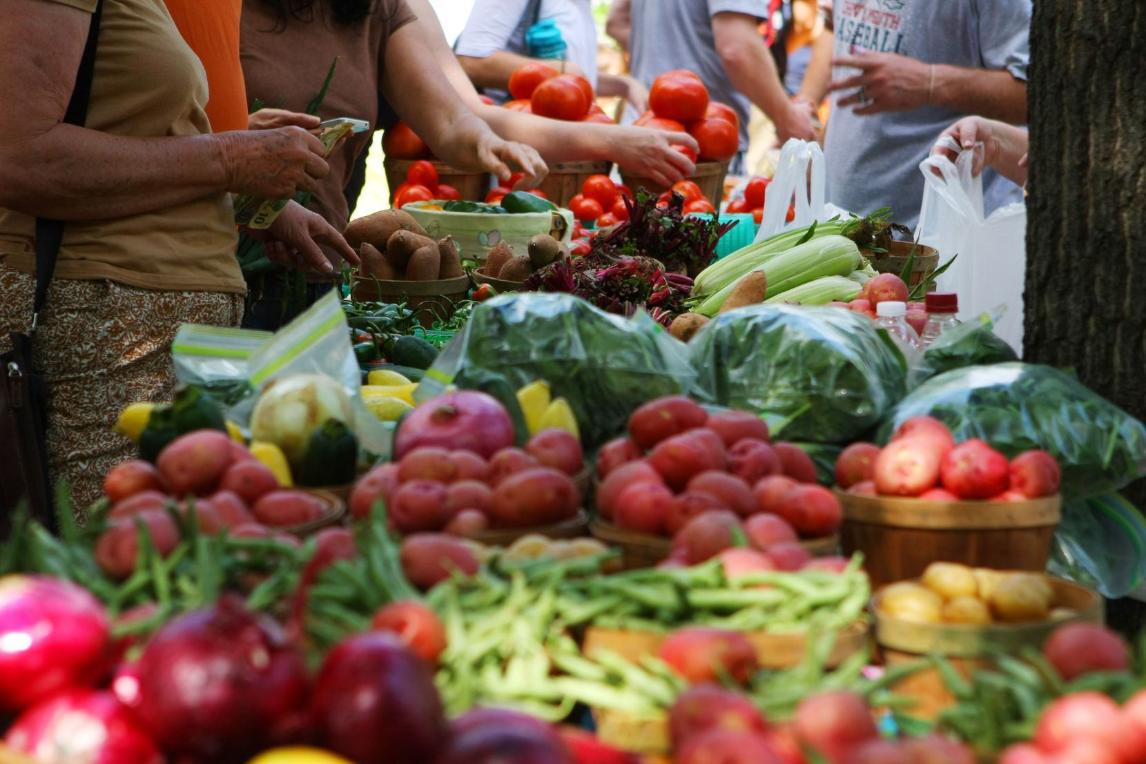 Marketgoers browse the vegetables at the Historic McKinney Farmers Market in Chestnut Square Historic Village.