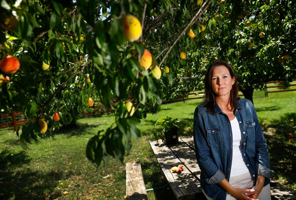 Argyle resident Gwende Wilmot poses for a photo in her small peach orchard behind her home. She is one of the many residents worried about how land use changes could affect her agriculture exemptions.