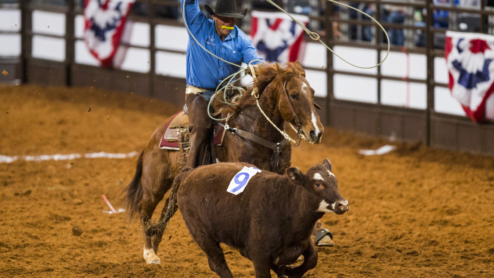 Dickies Arena is the new home for rodeo action at the Fort Worth Stock Show.
