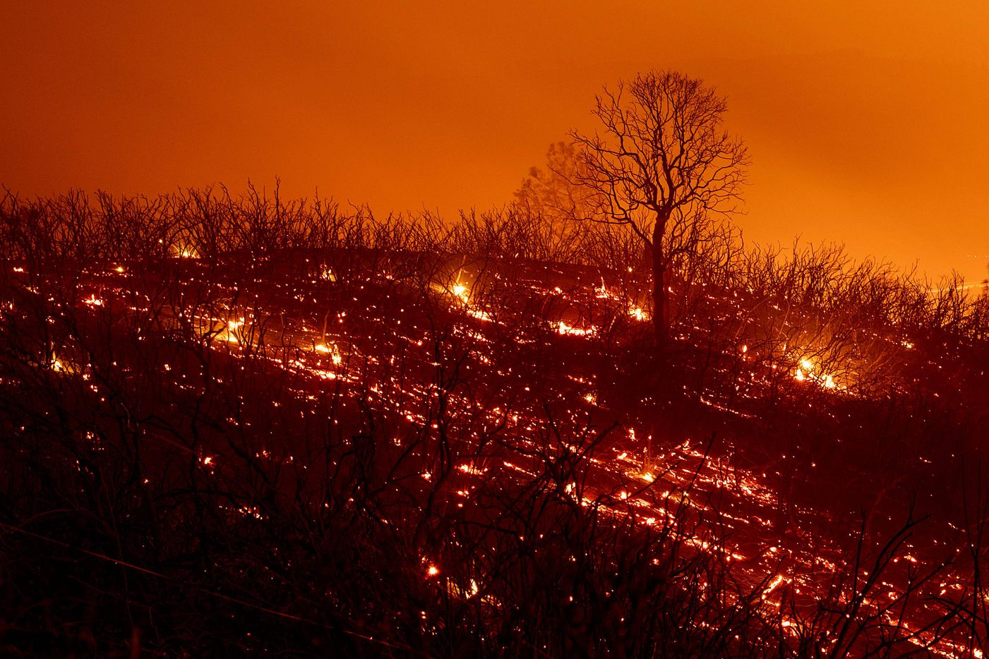 Embers smoulder along a hillside after the Ranch Fire, part of the Mendocino Complex Fire, burned though the area near Clearlake Oaks, California, on August 5, 2018.  Several thousand people have been evacuated as various fires swept across the state, although some have been given permission in recent days to return to their homes. / AFP PHOTO / NOAH BERGERNOAH BERGER/AFP/Getty Images