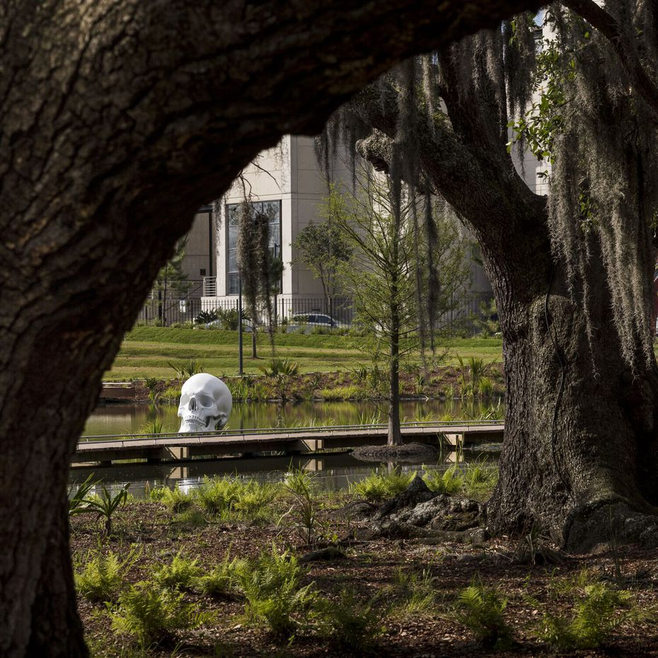 A larger-than-life skull, a work by Katharina Fritsch, sits on a lagoon bank at the Sydney and Walda Besthoff Sculpture Garden in New Orleans.