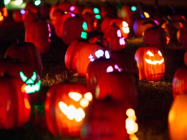 Whether you're looking for free s'mores and spooky campfire stories, a cemetery tour or drive-thru trick-or-treating, Garland has several ways to celebrate the spooky season. (Courtesy Chris Anderson, permission via Allison Chvojan)