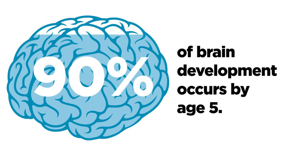 90% of a child's brain development occurs by age 5, according to research.