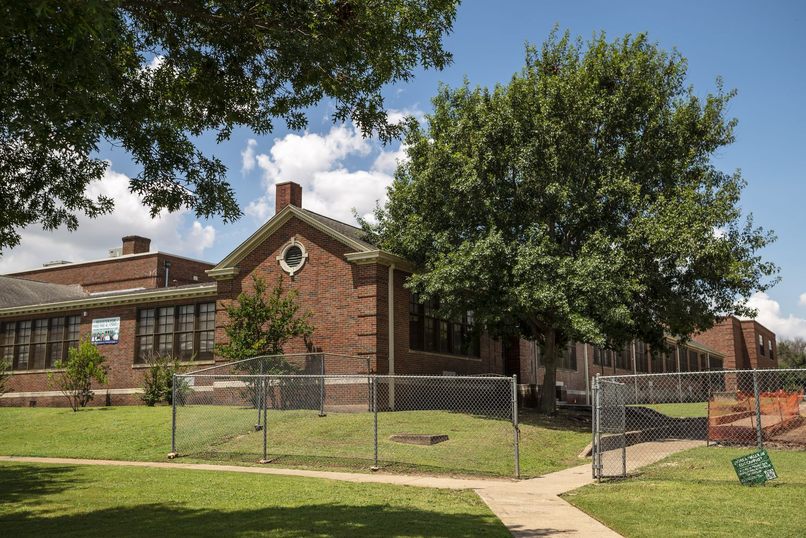 The tree that Diana C. Vargas-Martínez and her mother Marisela Vargas planted in 1992 outside of Leila P. Cowart Elementary in Dallas, photographed on Thursday, July 01, 2021.