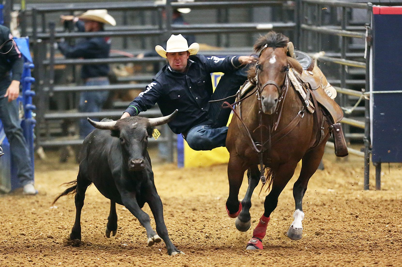 Cody Harmon competes in steer wrestling on Teacher Appreciation Night at the Mesquite Rodeo Championship arena in 2020.