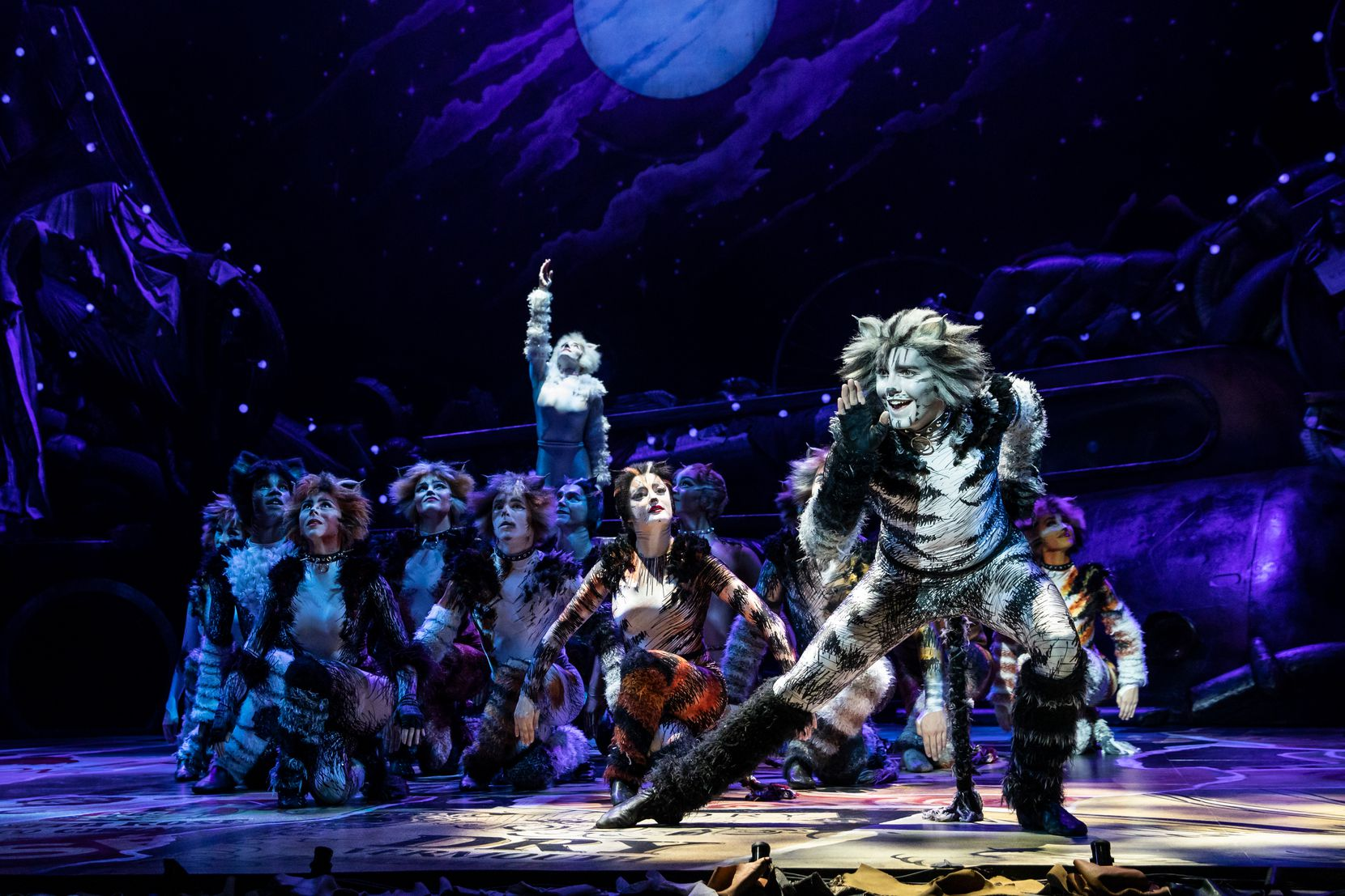 """Dan Hoy plays Munkustrap in the North American tour of """"Cats."""""""