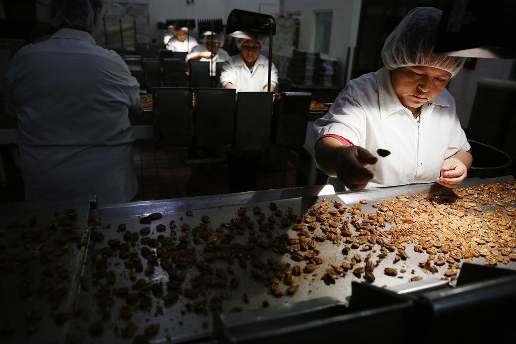 Inspector Jacqueline Saldana discards a pecan while looking for insect bites, discoloration and remaining shell while examining pecans inside Navarro Pecan Company in Corsicana, Texas Friday October 27, 2017. Navarro Pecan Company is one of the largest pecan producers in the world and was founded in 1977. The pecan is the only commercially produced nut that is native to America. Navarro only uses pecans grown in America. (Andy Jacobsohn/The Dallas Morning News)