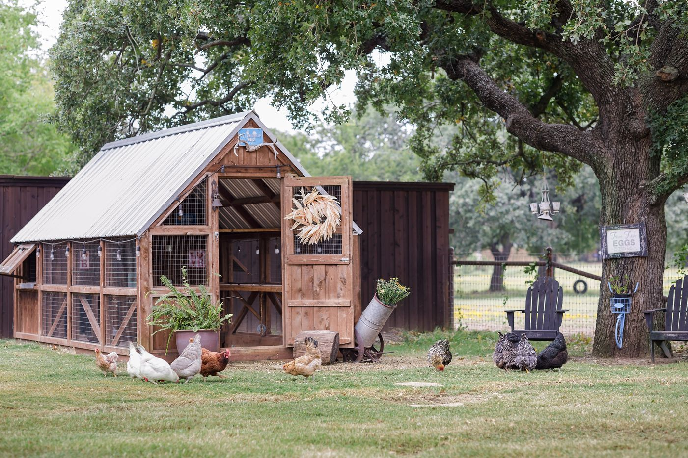 Take a look at 4004 Quail Run Road in Flower Mound, Texas.