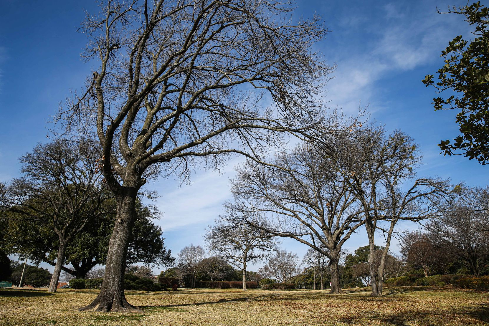 Samuell Grand Park in East Dallas has many lovely pockets but the lack of pedestrian-friendly sidewalks and trails makes connectivity and access a challenge.