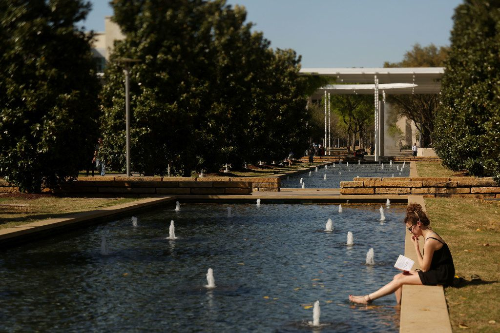 File photo of a student reading on the campus of University of Texas at Dallas in Richardson.
