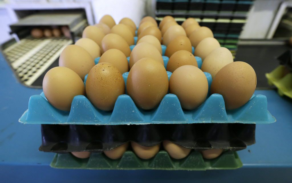 While it's unclear how many chicken producers experienced losses, even small percentage changes in supply can move the market, and prices have already been gaining.