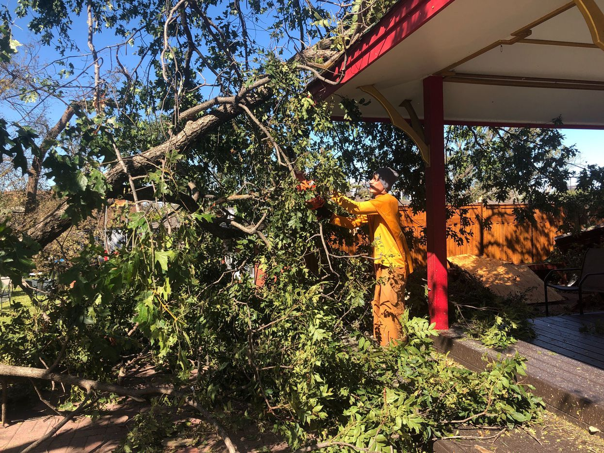 A monk uses a chainsaw to clear a fallen tree at the Buddhist Center of Dallas on Oct. 21, 2019, after a tornado storm swept through the area.