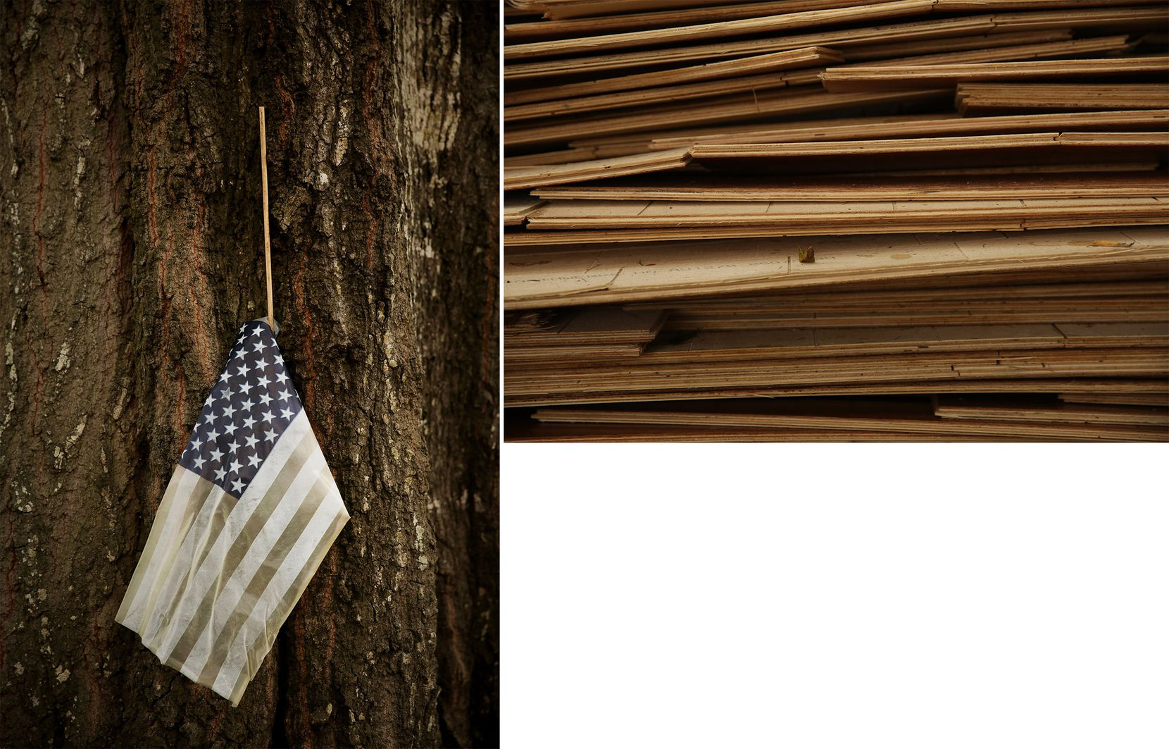 Surrounded by dumped debris, an American flag hangs from a tree's crevice in the Meyerland neighborhood.