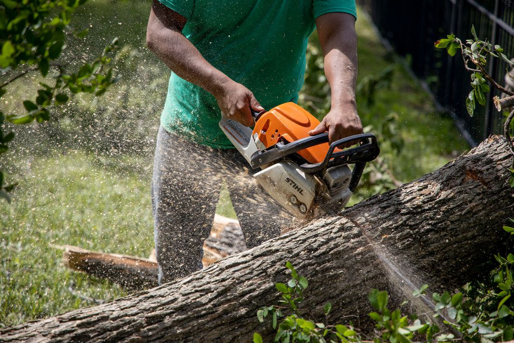 Bryan Benavides cuts down a tree from someone's yard near White Rock Lake in Dallas on Monday, June 10, 2019. Strong storms produced widespread damage throughout Dallas-Fort Worth, causing more than 200,000 people to lose power. (Shaban Athuman/Staff Photographer)