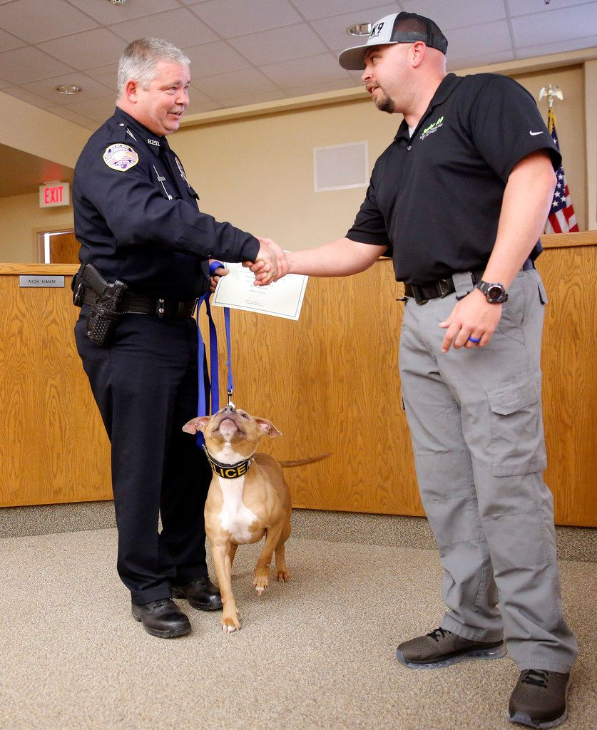 City of Barling (Ark.) police Officer Don Rowe (left) is congratulated by Sector K9 operator Wes Keeling after he and Hype, his new canine police pit bull, graduated from the Midlothian-based police canine training group at Ferris ISD auditorium in Ferris.