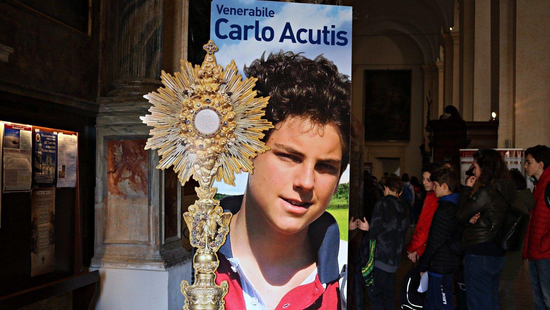 Carlo Acutis, el adolescente que será beatificado el 10 de octubre. Foto del sitio web del Vaticano.