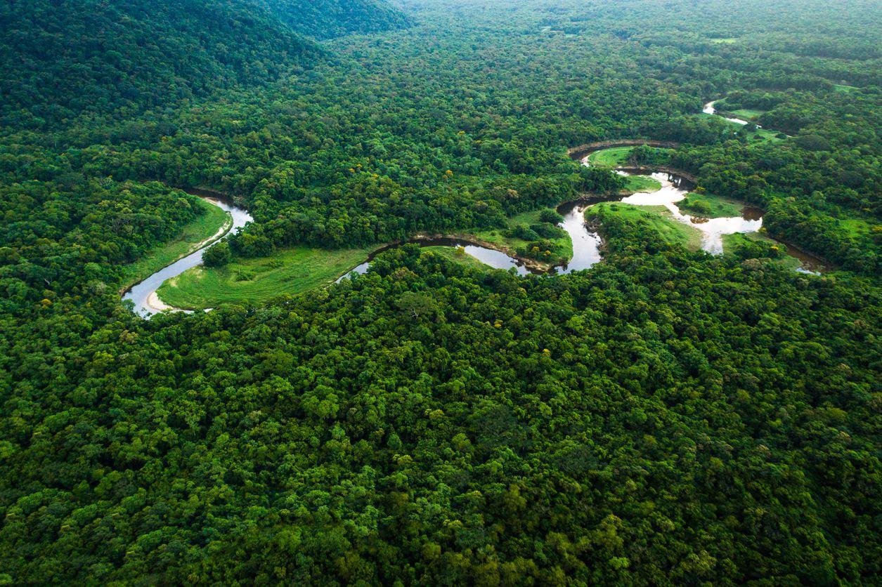 Una sección de la Selva Amazónica en Brasil.