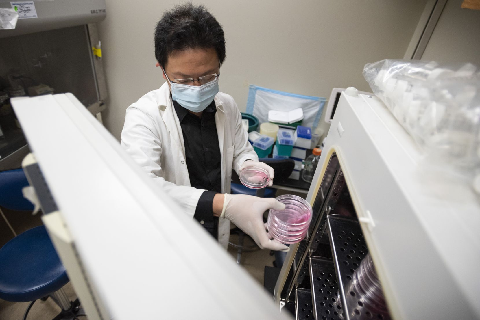 Dr. Zhihao Wu of Southern Methodist University pulls samples of growing cancer cells from a laboratory refrigerator in a research lab on the campus of Southern Methodist University in Dallas.