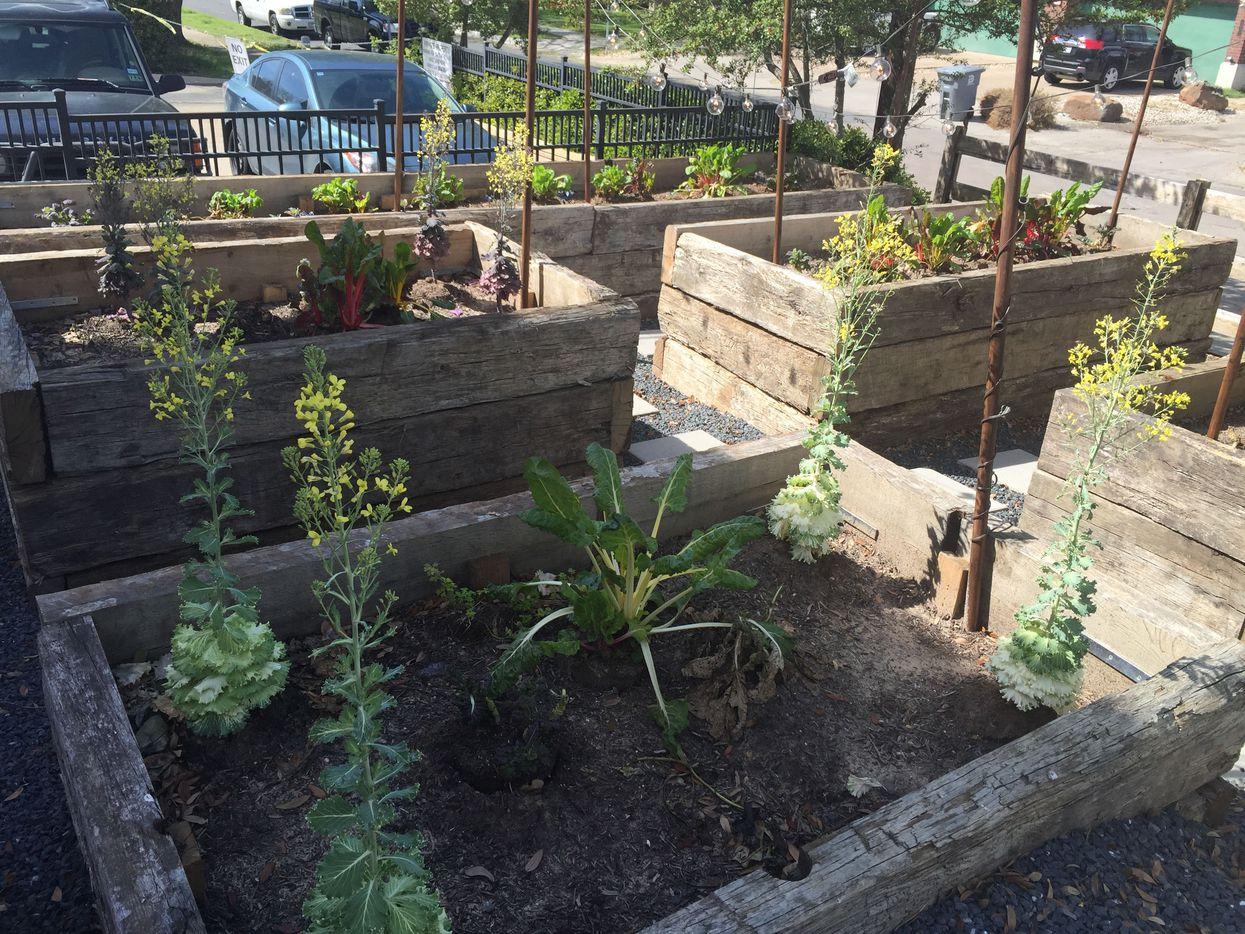Wayward Sons' vegetable garden supplies the kitchen