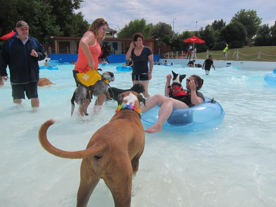 Four-leggers will get their turn in the wave pool at Hawaiian Falls in Garland.