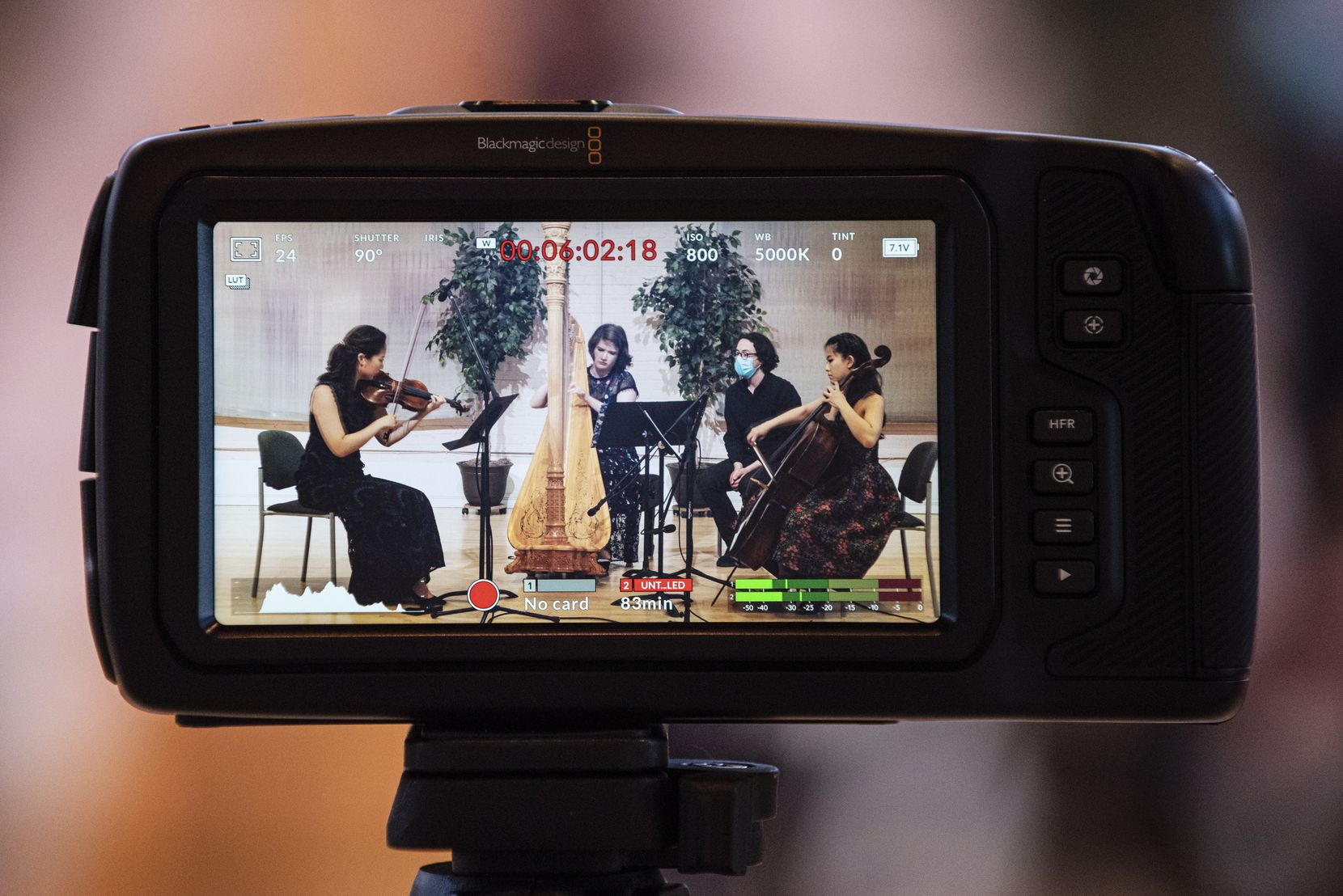 Presented by the Fine Arts Chamber Players, violinist Julia Choi, harpist and artistic director Emily Levin, and cellist Jennifer Choi, are photographed displayed on a camera's LCD screen recording Henriette Renié's Trio for Harp, Violin and Cello, at the Sammons Center for the Arts in Dallas, on April 21.