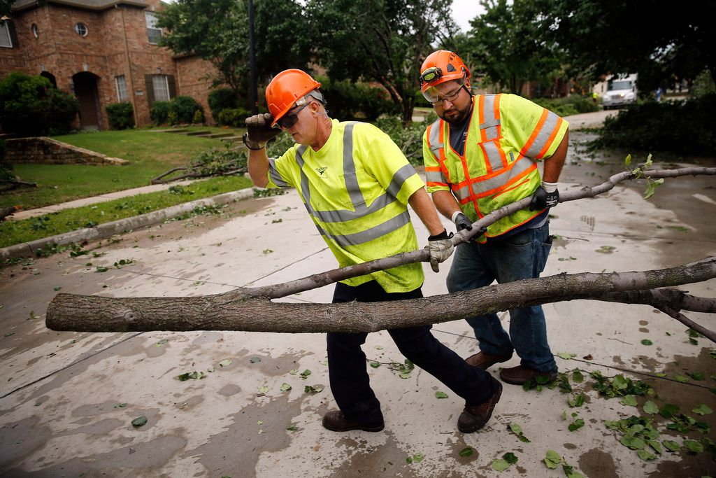 Fort Worth Park and Recreation crews clean up downed Bradford pears trees on Pendleton Dr. in North Fort Worth after winds toppled trees and tore shingles off homes, Wednesday, May 29, 2019. A tornado warned storm passed through the neighborhood near Heritage Trace Pkwy and N. Riverside Dr.