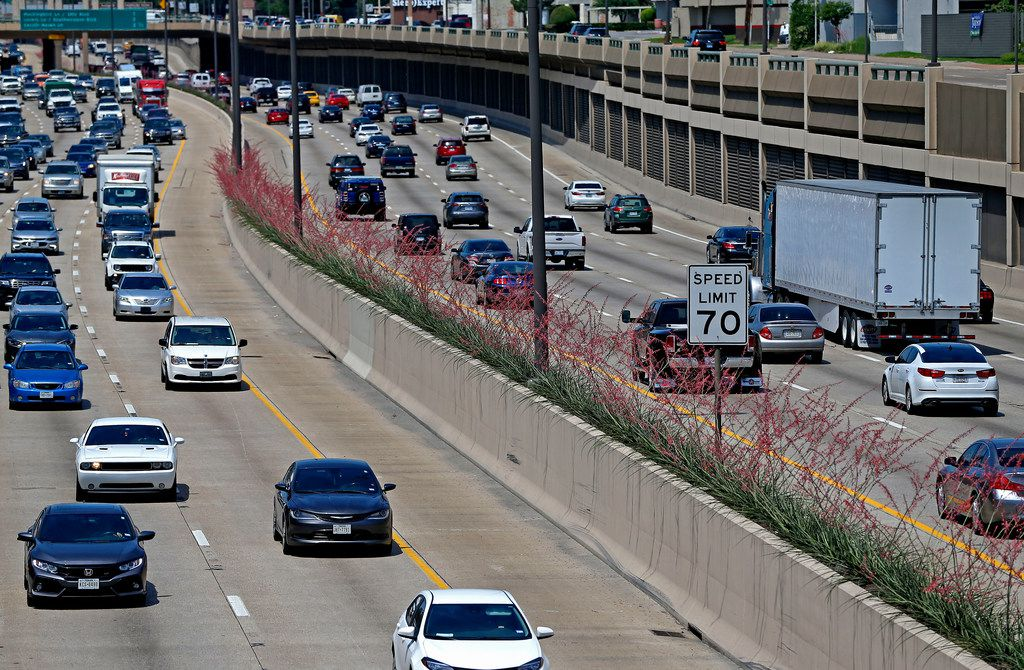 Traffic moves by Texas Red Yucca plants that were planted in the medians along Central Expressway in Dallas.