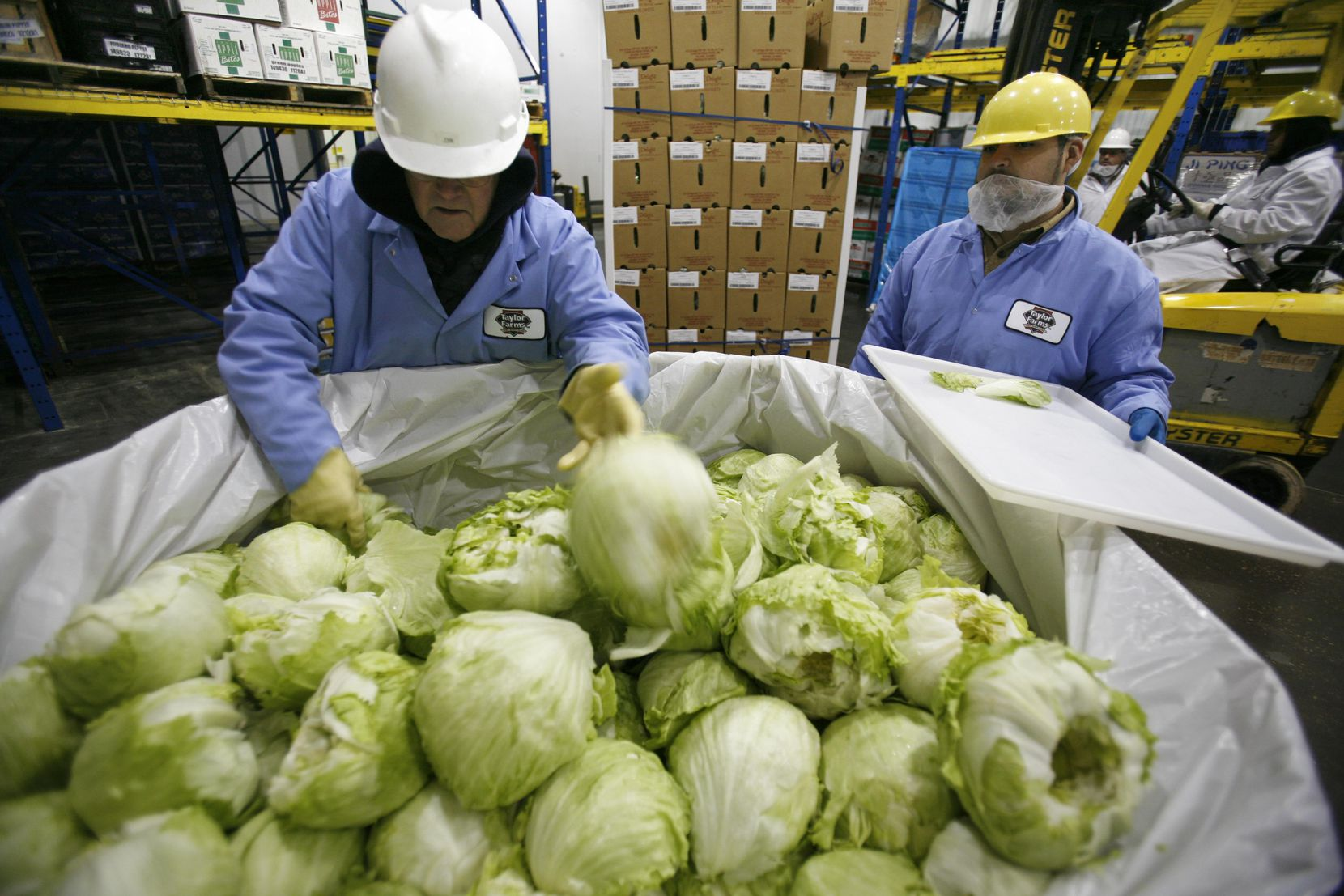 A quality assurance employee spot checked boxes of lettuce upon the shipment's arrival from Mexico at the Taylor Farms warehouse in Dallas in December 2007. Several of the plant's workers have tested positive for COVID-19.