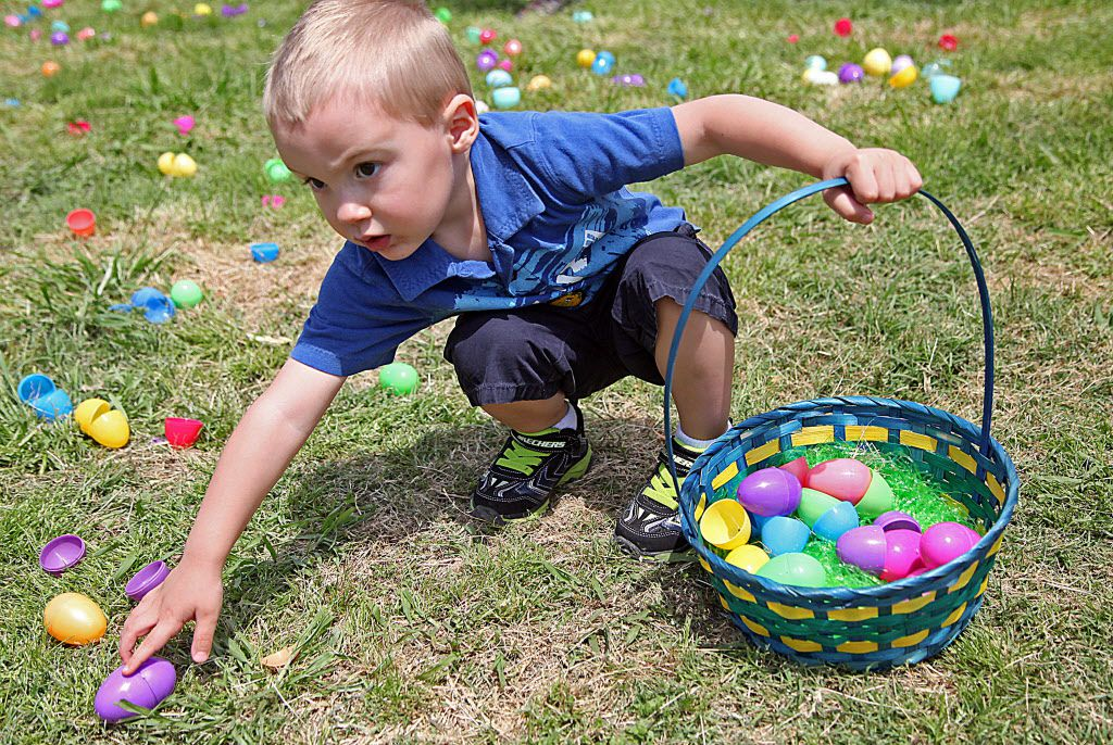 Jax Kenoyer, 3, of Plano, finds an egg to add to his basket during the In-Sync Exotics annual Easter Egg Hunt on April 19, 2014, at the Wylie wildlife rescue and educational center.