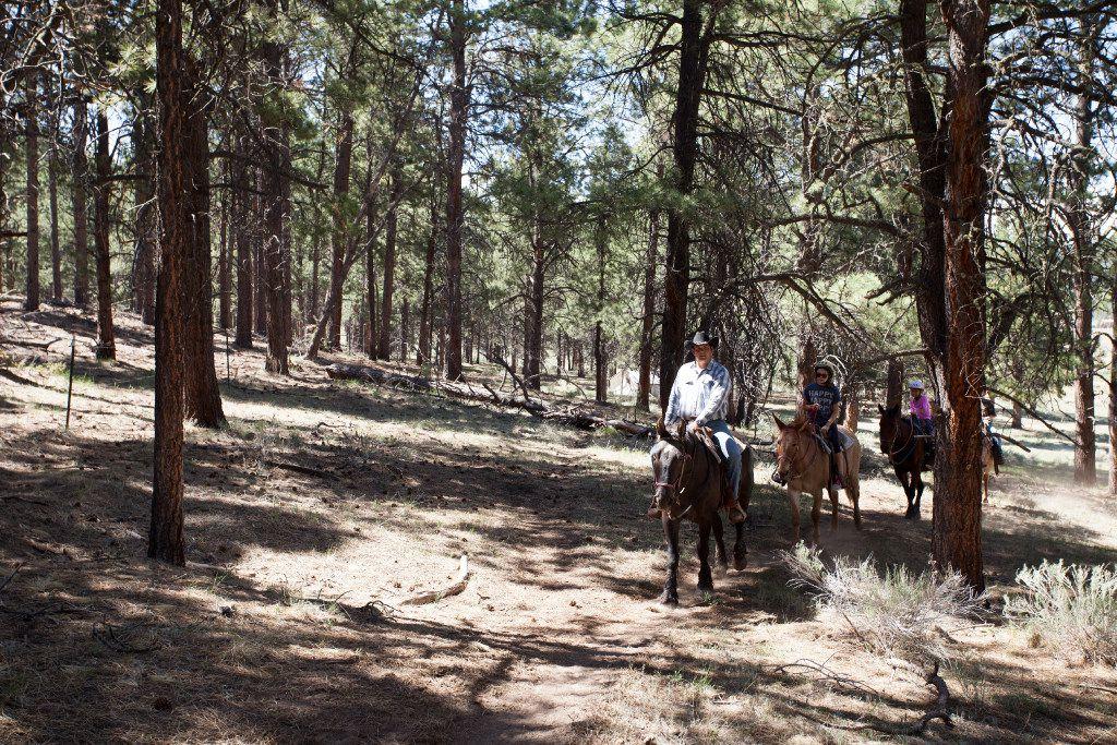 Horseback riding at Angel Fire resort in Taos