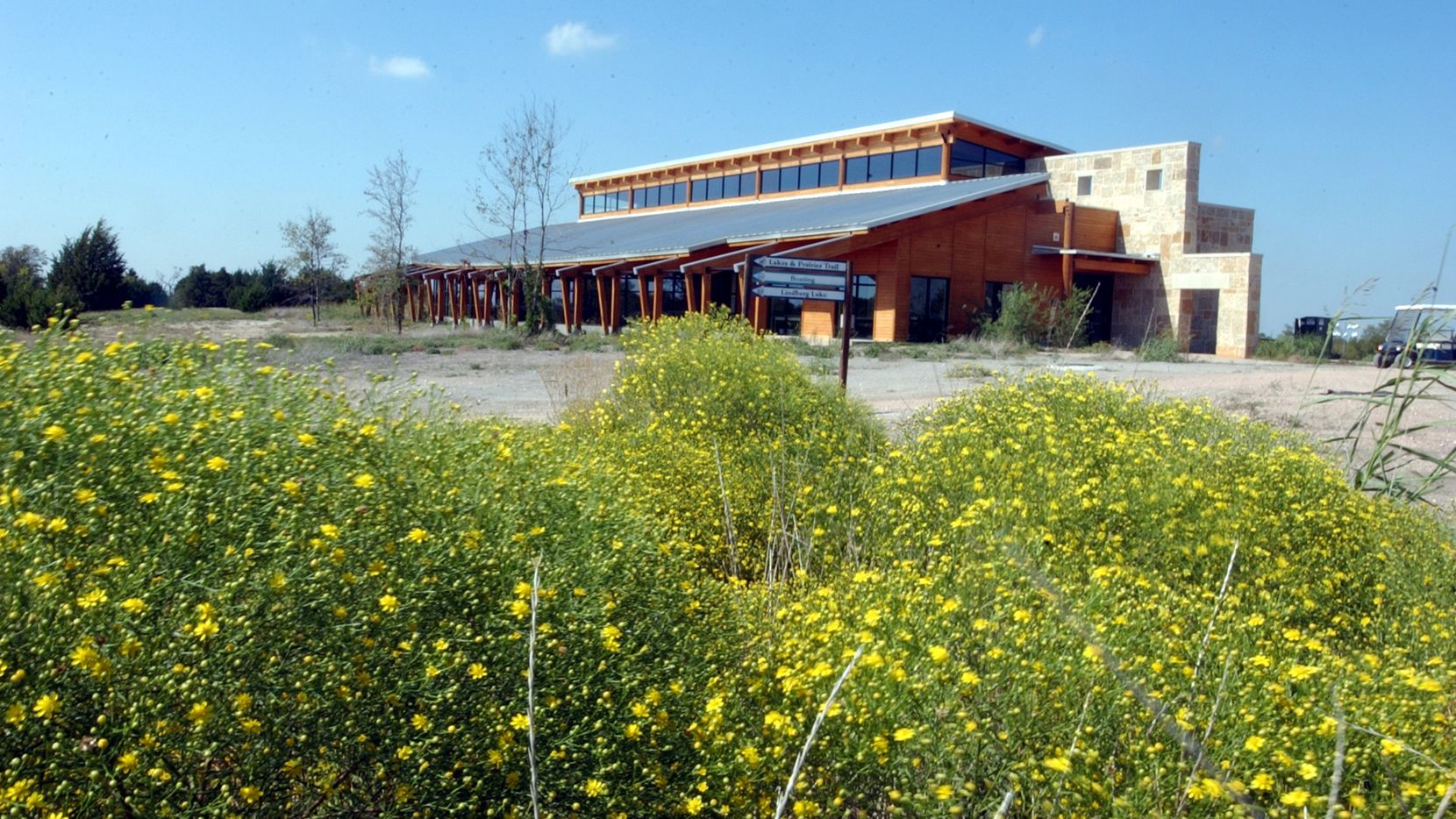 Broom weed surrounds the Education Building at the Collin County Adventure Camp, part of the Plano school district's science program.