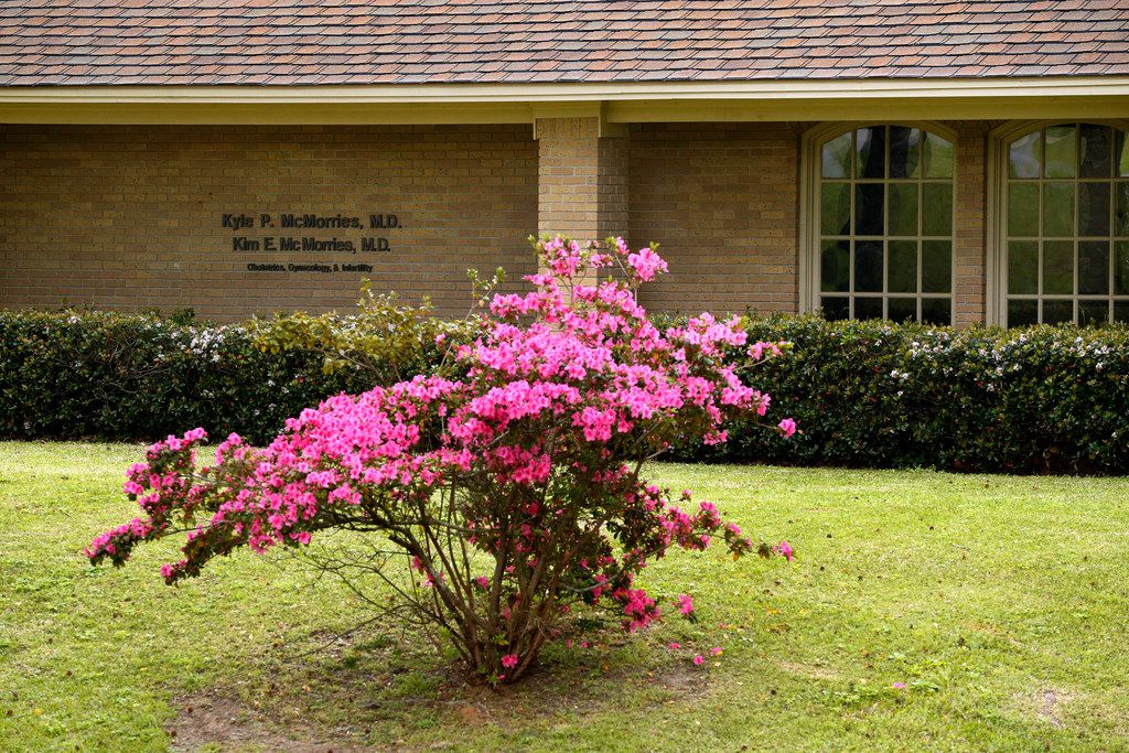 The McMorries Obstetrics, Gynecology & Infertility office in Nacogdoches.