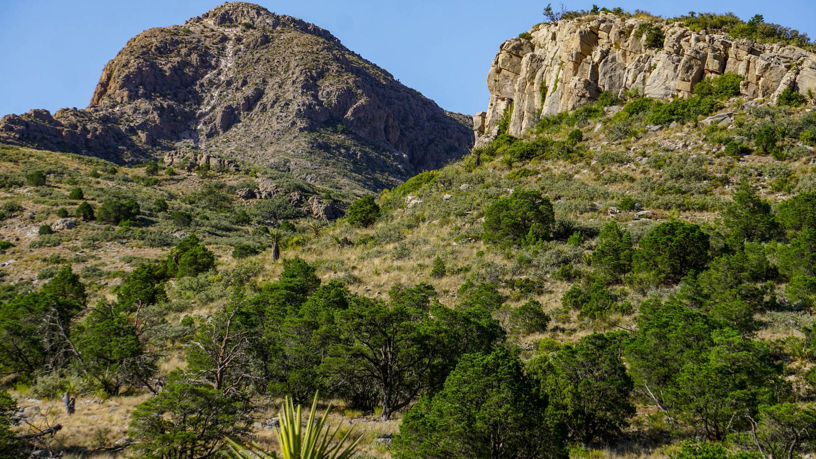 Boss Ranch in Brewster County includes 5,000-foot peaks and desert plains.